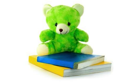 Taxing Nannies teddy bear