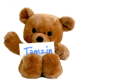 Tamzin's teddy bear